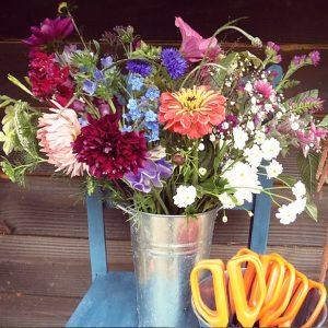 PYO Flowers